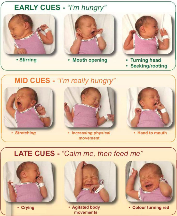 How Do I Know if My Baby is Hungry? | Marginal Mama
